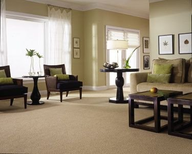 house carpet cleaners
